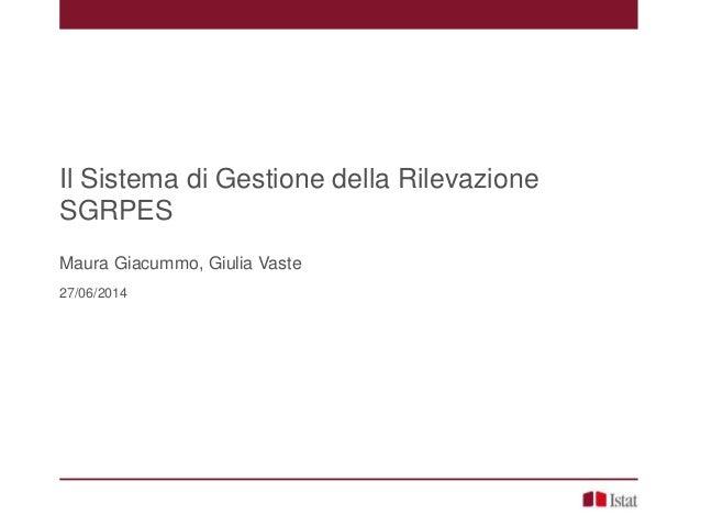 Il Sistema di Gestione della Rilevazione SGRPES Maura Giacummo, Giulia Vaste 27/06/2014