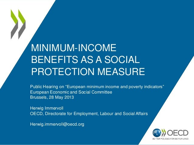 Minimum income benefits as a social protection measure