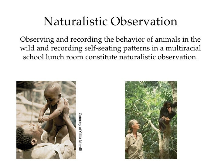 naturalistic observation practice being a Naturalistic observation, also known as nonparticipant observation, has no intervention by a researcher it is simply studying behaviors that occur naturally in natural contexts, unlike the artificial environment of a controlled laboratory setting.