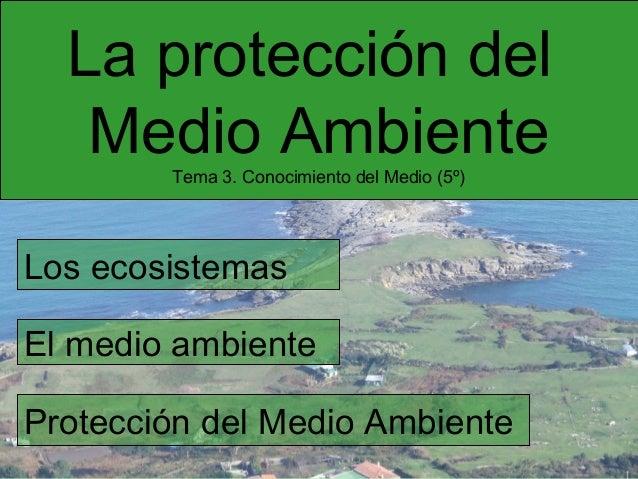 La protección del Medio Ambiente Tema 3. Conocimiento del Medio (5º)  Los ecosistemas El medio ambiente Protección del Med...