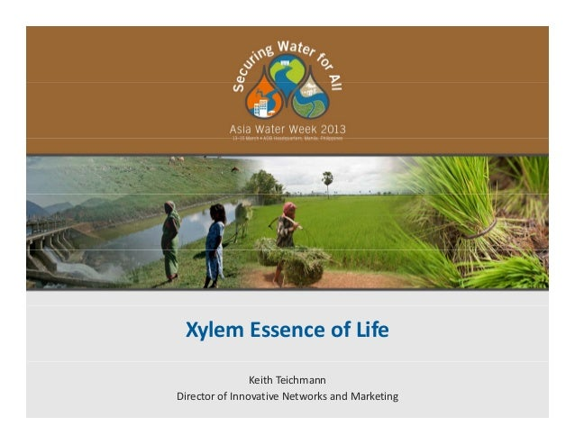 Xylem Essence of LifeKeith TeichmannDirector of Innovative Networks and Marketing