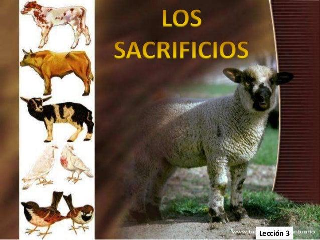 03 santuario sacrificios