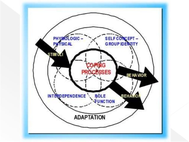 roy adaptation theory Sister callista roy's adaptation model (ram) is representative of a grand nursing theory whose conceptual framework is focused on the interconnected, holistic individual and his/her interaction with the environment.