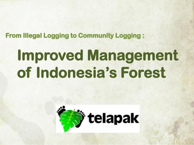 From Illegal Logging to Community Logging :  Improved Management of Indonesia's Forest
