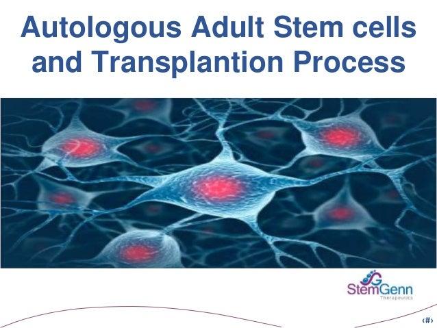 Autologous Adult Stem Cells 89