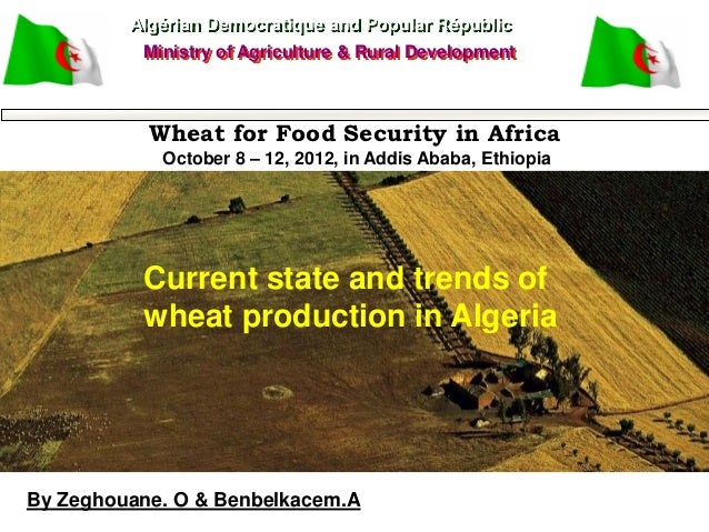 Current state and trends of wheat production in Algeria