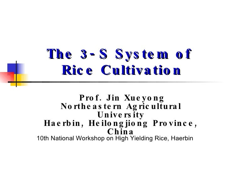 The 3-S System of  Rice Cultivation Prof. Jin Xueyong Northeastern Agricultural University Haerbin, Heilongjiong Province,...