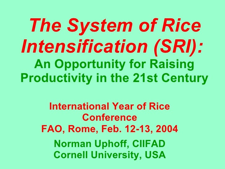 The System of Rice Intensification (SRI):   An Opportunity for Raising Productivity in the 21st Century International Year...