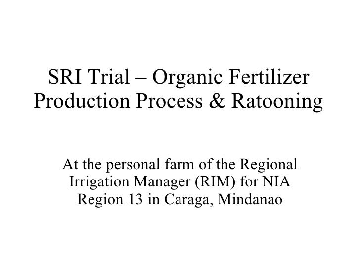 SRI Trial – Organic Fertilizer Production Process & Ratooning At the personal farm of the Regional Irrigation Manager (RIM...