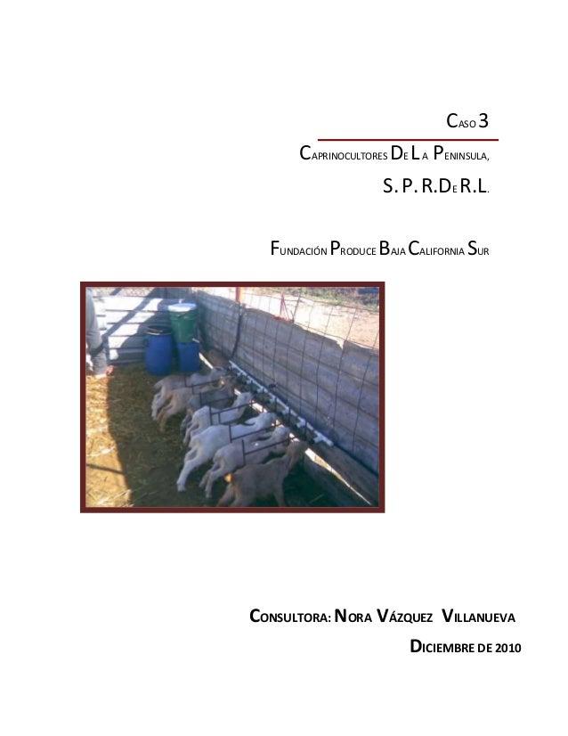 CASO 3 CAPRINOCULTORES DE LA PENINSULA, S.P.R.DE R.L. FUNDACIÓN PRODUCE BAJA CALIFORNIA SUR CONSULTORA: NORA VÁZQUEZ VILLA...