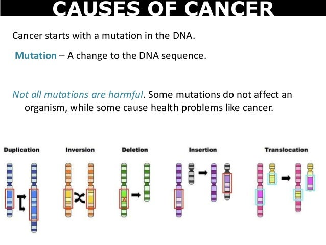 are all mutations harmful