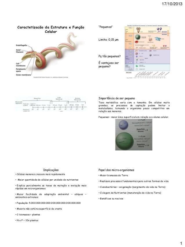 """17/10/2013  Caractetizacão da Estrutura e Função Celular  """"Pequenos""""  Limite: 0,15 µm  Pq tão pequenos? É vantajoso ser pe..."""