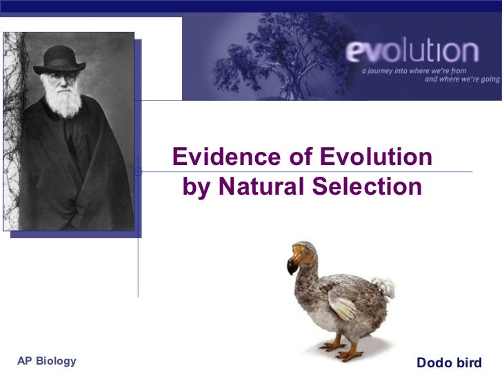 Evidence of Evolution              by Natural SelectionAP Biology                       Dodo bird                         ...