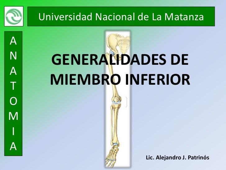 Universidad Nacional de La MatanzaAN     GENERALIDADES DEAT     MIEMBRO INFERIOROMIA                          Lic. Alejand...