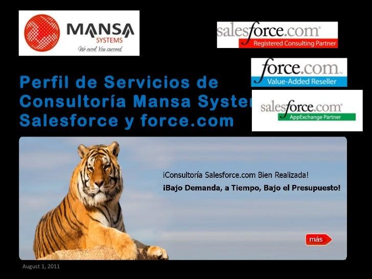 Perfil de Servicios de Consultoría Mansa Systems Salesforce y force.com August 1, 2011 297