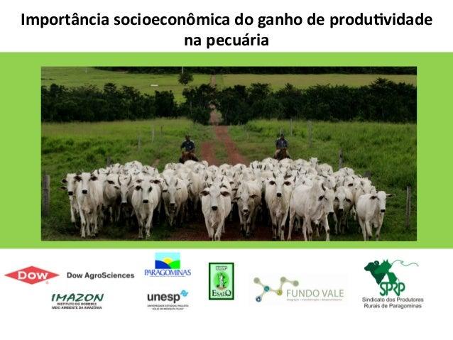 [Palestra] Mauro Lúcio de Castro Costa: O que o Projeto Pecuária Verde mudou no bem-estar animal na Fazenda Marupiara.