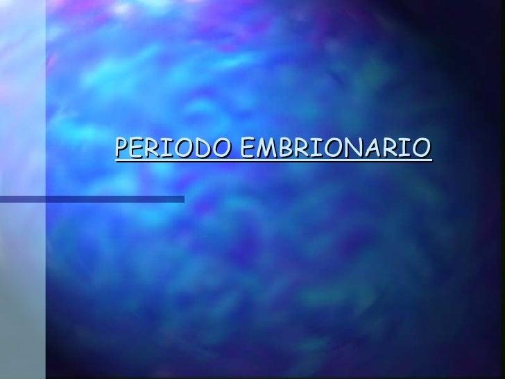 periodo embrionario