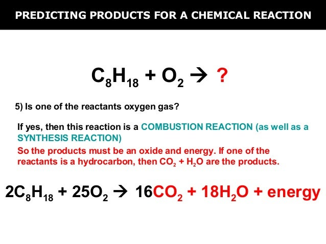 Reaction Essay