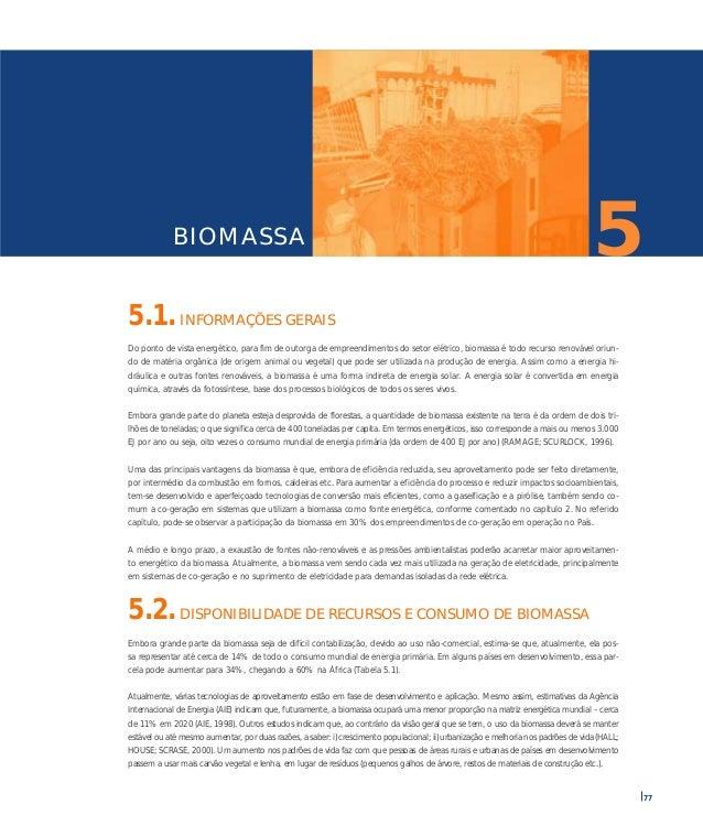05 biomassa