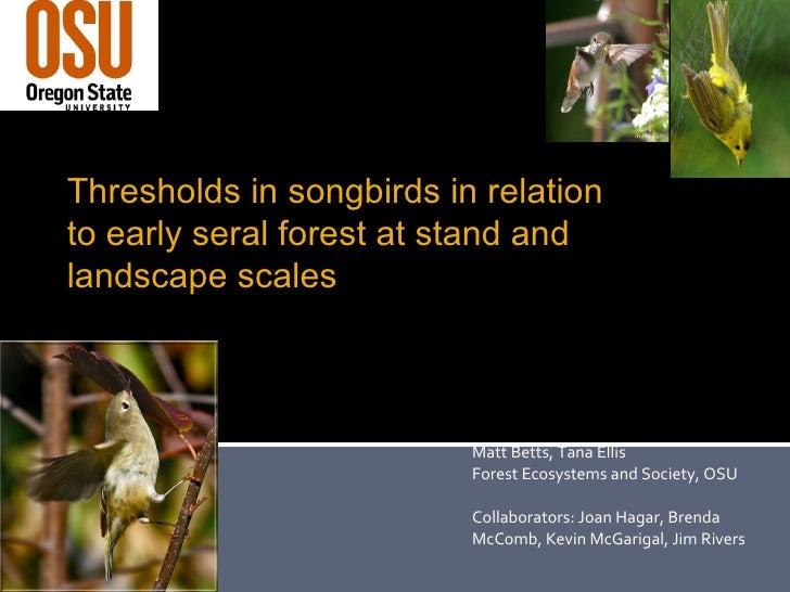 Matt Betts, Tana Ellis Forest Ecosystems and Society, OSU Collaborators: Joan Hagar, Brenda McComb, Kevin McGarigal, Jim R...