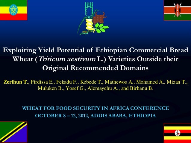 Exploiting Yield Potential of Ethiopian Commercial Bread Wheat (Triticum aestivum L.) Varieties Outside their Original Recommended Domains