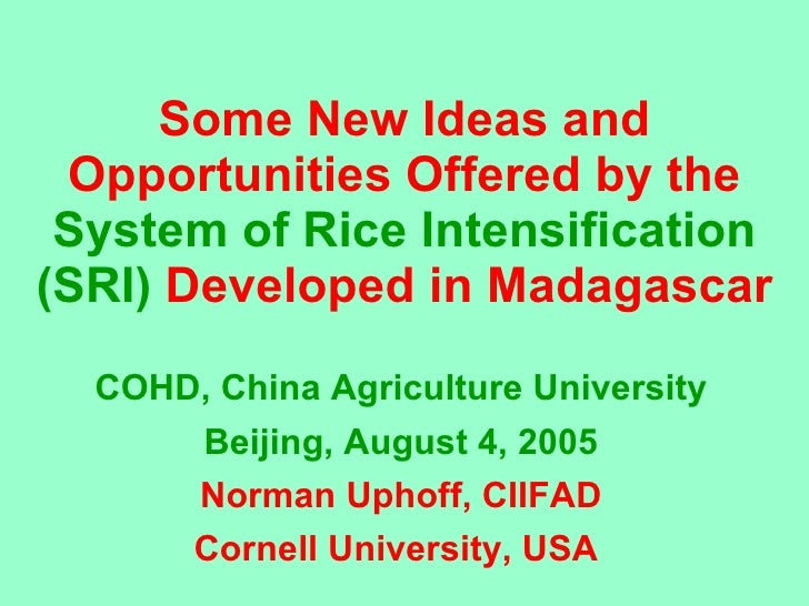 0506 Some New Ideas and Opportunities Offered by the System of Rice Intensification (SRI) Developed in Madagascar