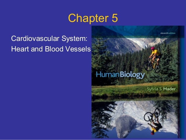 Chapter 5Cardiovascular System:Heart and Blood Vessels