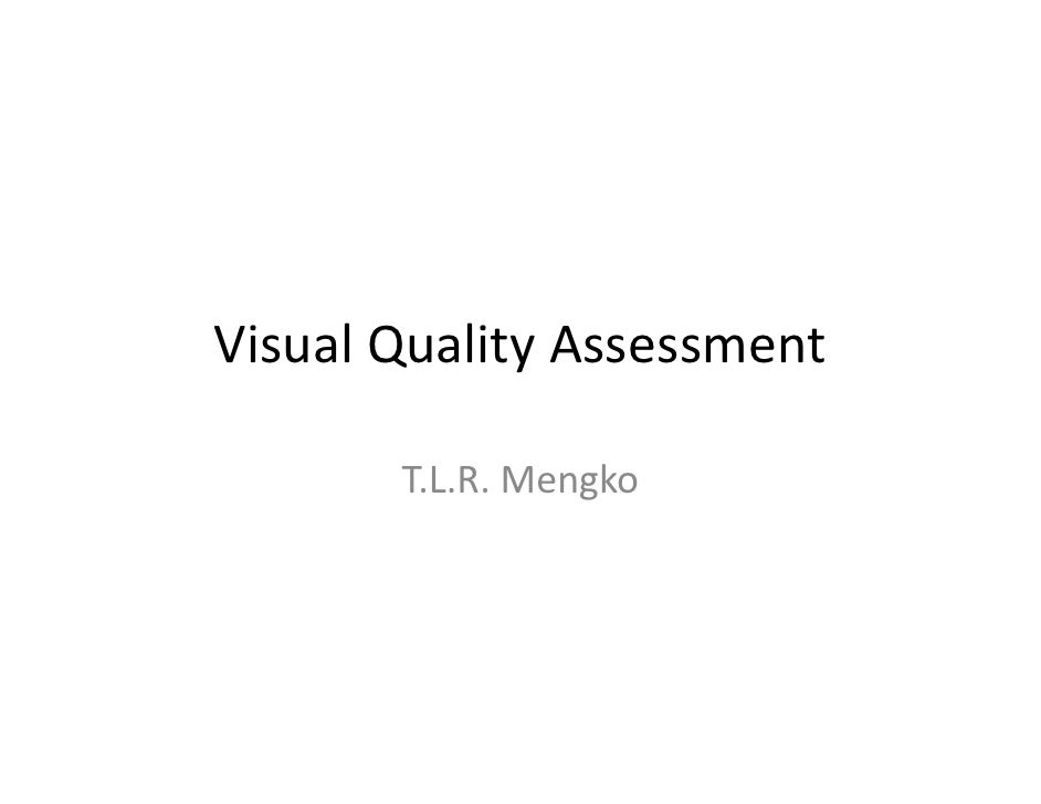05 visual quality assessment