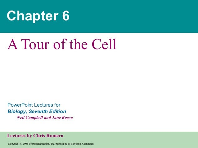 Cell (ppt. lecturers for Biology,7th Edition)lecturers by Chris Romero