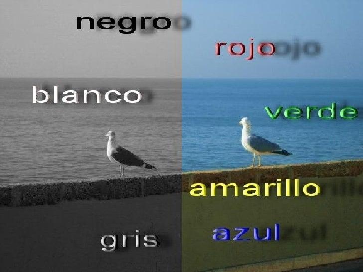 06 En Colorines
