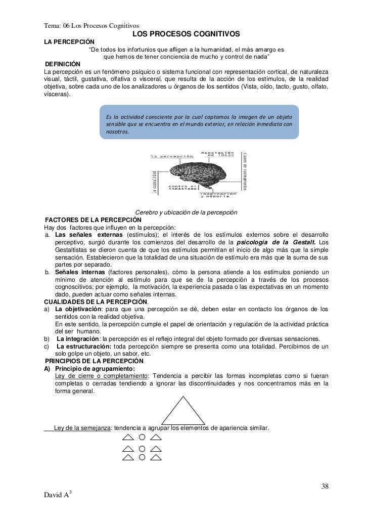 """Tema: 06 Los Procesos Cognitivos                                 LOS PROCESOS COGNITIVOSLA PERCEPCIÓN                  """"De..."""