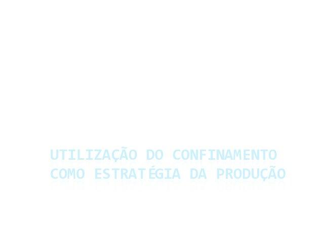 [Palestra] Rogério Costa: Utilização do confinamento como estratégia da produção com outras atividades que não a engorda ou o acabamento