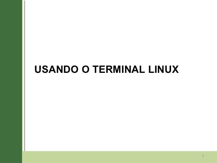 06 terminal linux