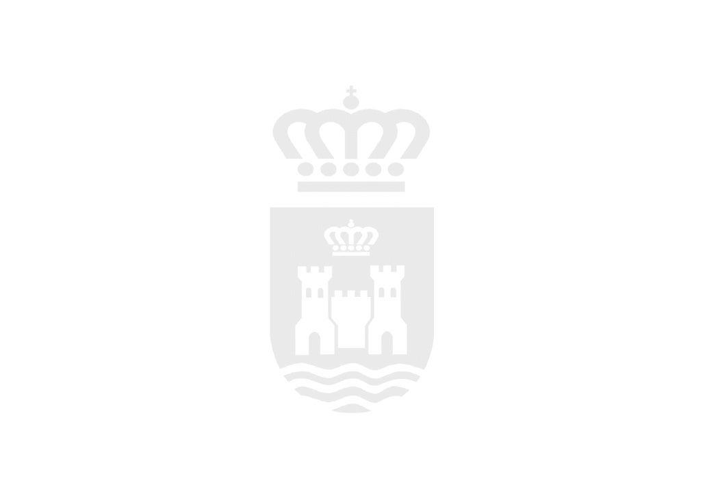EL PRESUPUESTO      MUNICIPAL