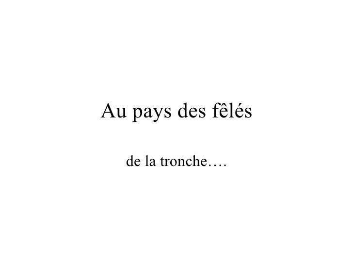 Au pays des fêlés de la tronche….