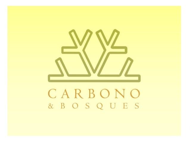 Implementación de un proyecto forestal agrupado bajo VCS-  William Laguado-  Carbono & Bosques