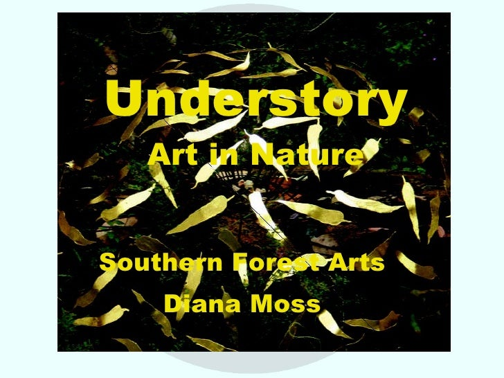 Understory Art in Nature Southern Forest Arts Diana Moss