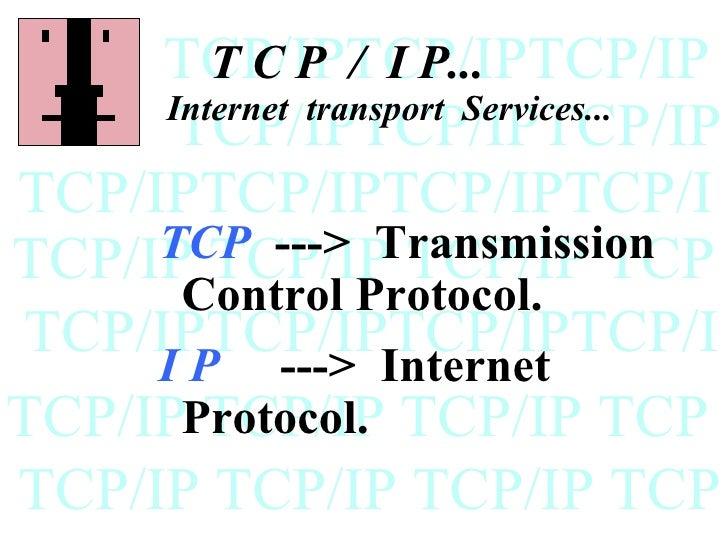 TCP/IPTCP/IPTCP/IP        T C P / I P...     Internet transport Services...      TCP/IPTCP/IPTCP/IPTCP/IPTCP/IPTCP/IPTCP/I...