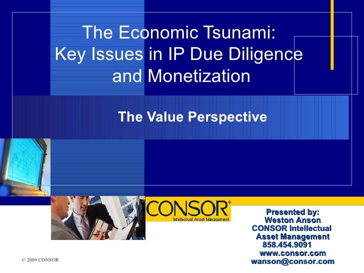 The Economic Tsunami: Key Issues in IP Due Diligence
