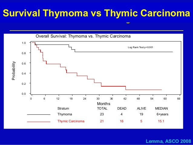 Rare Solid Cancers: An Introduction - Slide 16 - R.A ...  Thymus