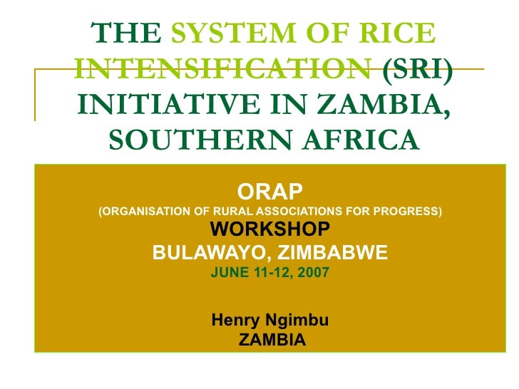 THE  SYSTEM OF RICE INTENSIFICATION  (SRI) INITIATIVE IN ZAMBIA, SOUTHERN AFRICA ORAP (ORGANISATION OF RURAL ASSOCIATIONS ...