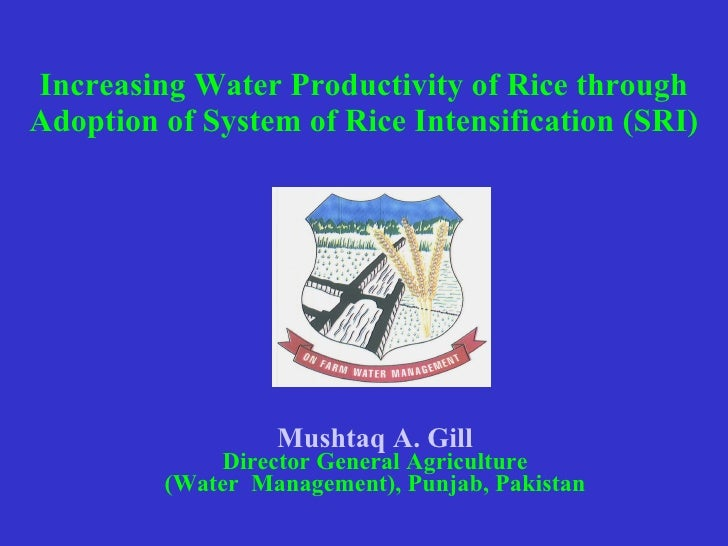 0708 Increasing Water Productivity of Rice through Adoption of System of Rice Intensification (SRI)
