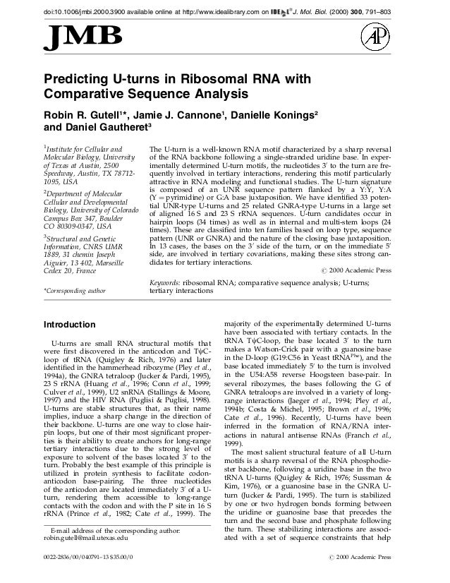 Predicting U-turns in Ribosomal RNA withComparative Sequence AnalysisRobin R. Gutell1*, Jamie J. Cannone1, Danielle Koning...