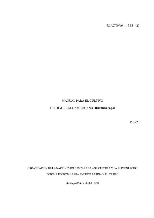 Manual para el cultivo del bagre sudamericano (rhamdia sapo)