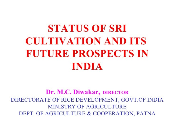 STATUS OF SRI CULTIVATION AND ITS  FUTURE PROSPECTS IN INDIA Dr. M.C. Diwakar ,  DIRECTOR DIRECTORATE OF RICE DEVELOPMENT,...