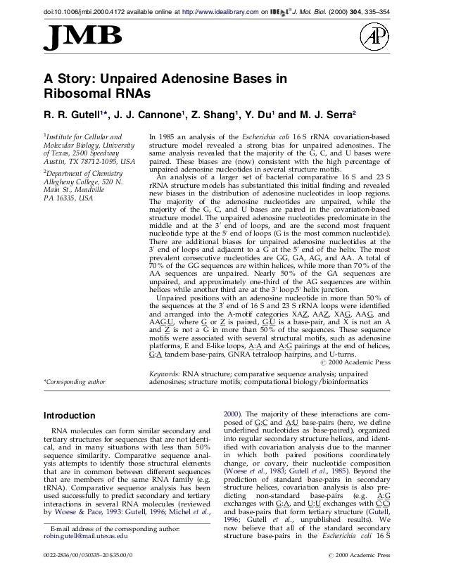 A Story: Unpaired Adenosine Bases inRibosomal RNAsR. R. Gutell1*, J. J. Cannone1, Z. Shang1, Y. Du1and M. J. Serra21Instit...