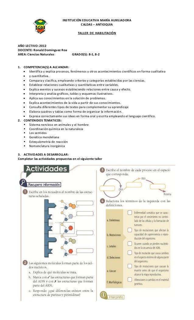 INSTITUCIÓN EDUCATIVA MARÍA AUXILIADORA                                          CALDAS – ANTIOQUIA                       ...