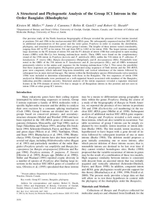 1654Mol. Biol. Evol. 18(9):1654–1667. 2001᭧ 2001 by the Society for Molecular Biology and Evolution. ISSN: 0737-4038A Stru...