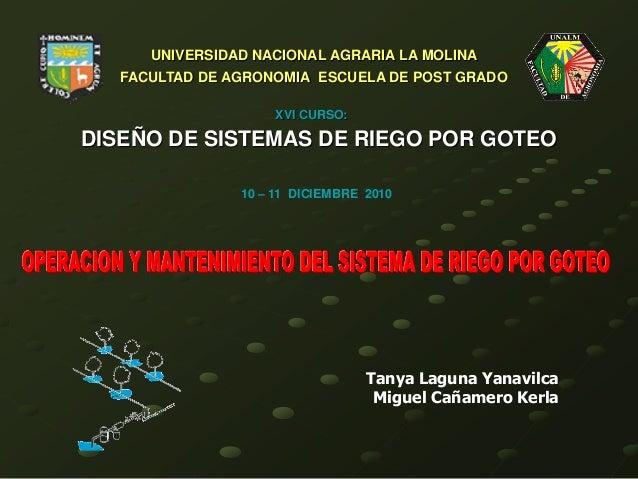 DISEÑO DE SISTEMAS DE RIEGO POR GOTEO UNIVERSIDAD NACIONAL AGRARIA LA MOLINA FACULTAD DE AGRONOMIA ESCUELA DE POST GRADO X...