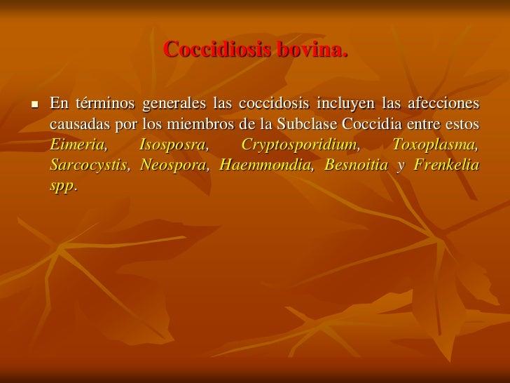 Coccidiosis bovina.     En términos generales las coccidosis incluyen las afecciones     causadas por los miembros de la ...